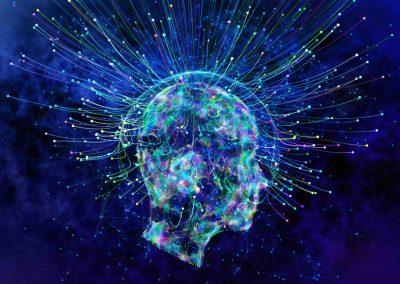 Neuroscience – Learning Pathway #1